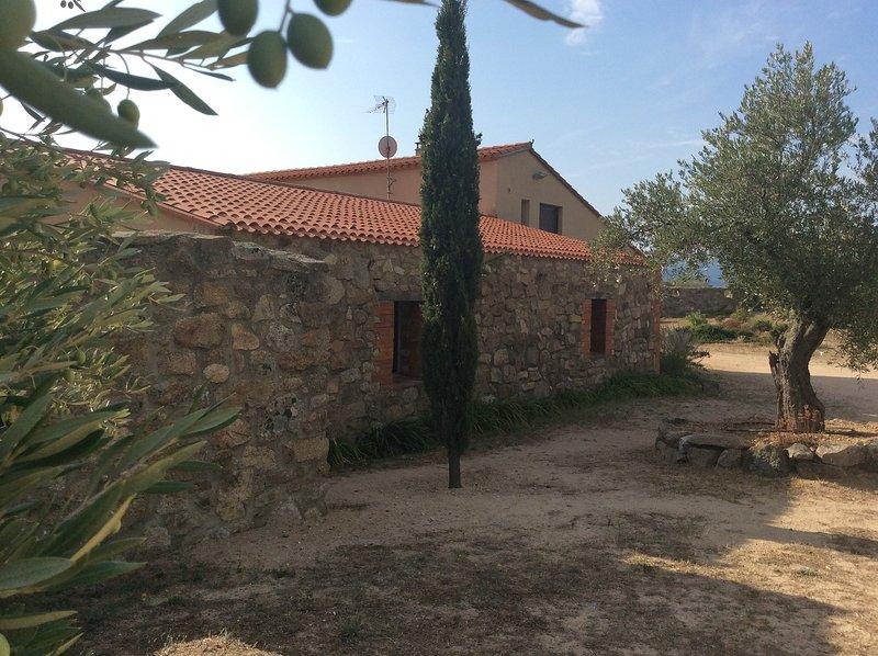 Gite Pyrénées Orientales, pleine nature et production huile d'olives artisanales, holiday rental in Ille-sur-Tet