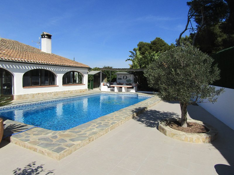 10 x 5 meter salt water pool with roman end steps
