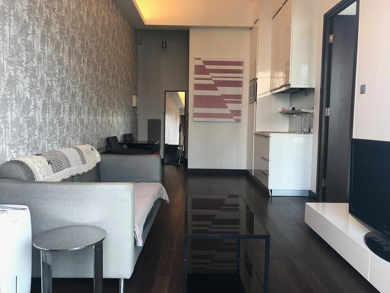 Spacious one bedroom flat, holiday rental in Hong Kong