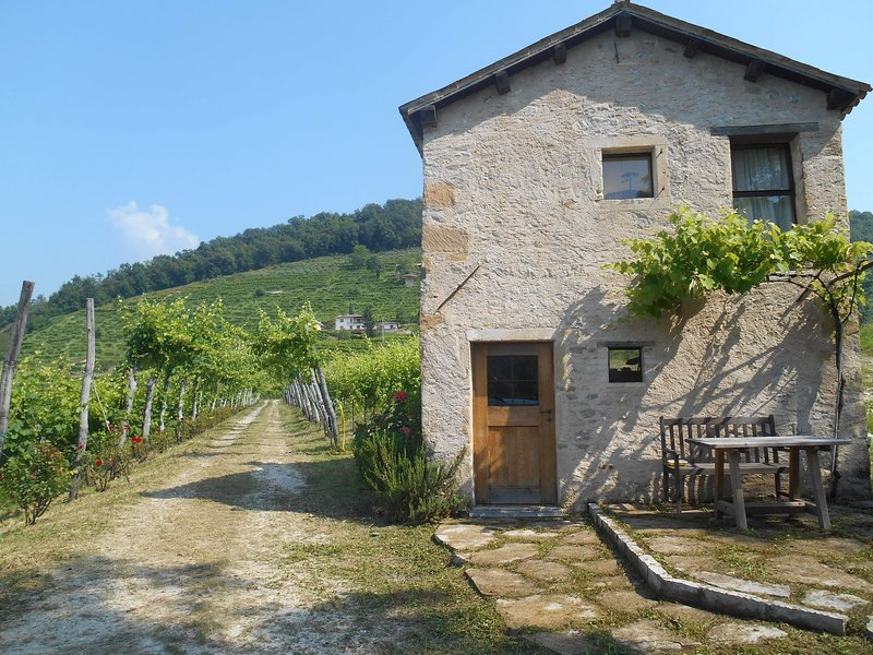 Cottage in the Prosecco Hills, holiday rental in Carpesica