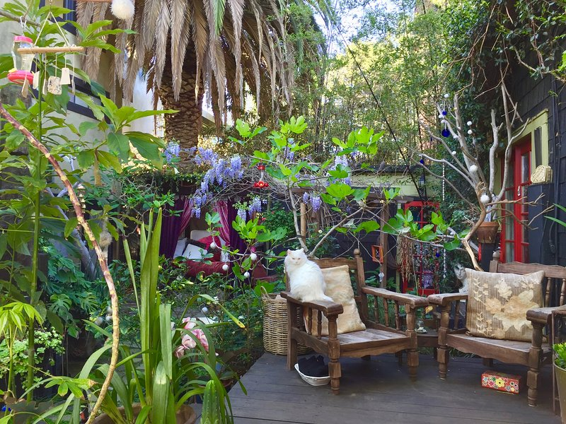 TreeHouse Venice, the loft is an a shared house surrounded by lush gardens.