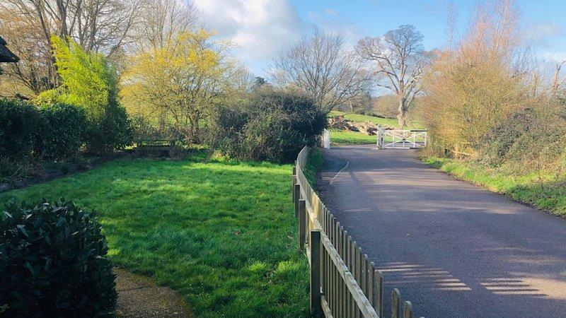 Vue du jardin avec une allée de campagne tranquille longeant le côté