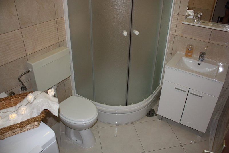 A2(4): bathroom with toilet