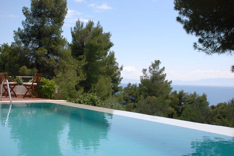 Villa Ismini tiene piscina infinita con vistas al mar.