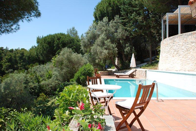 Villa Ismini, holiday rental in Agia Anna