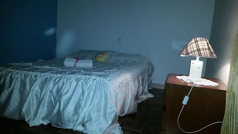 La  casa di  dalila  Appartamento   in  zona residenziale con 1  camera da letto, vacation rental in Santa Croce Sull'Arno