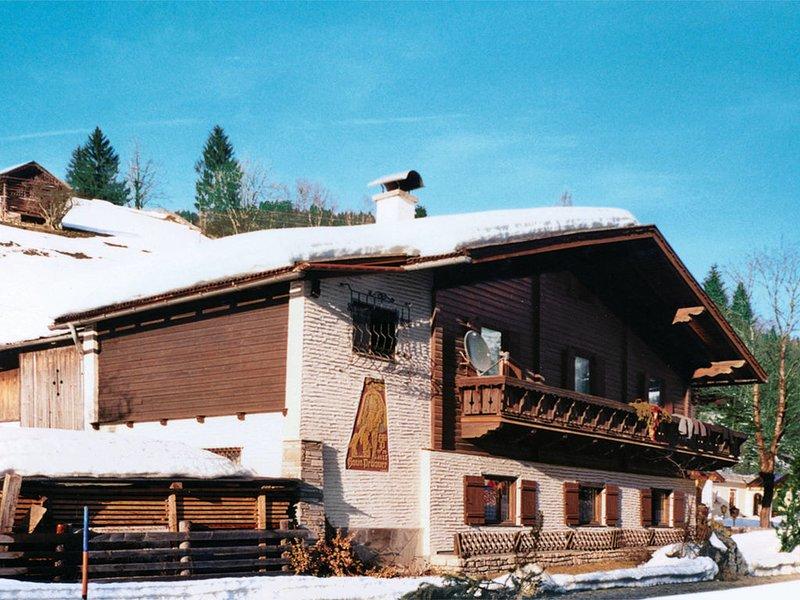 Schwarzenegg (WAG200), vacation rental in Wagrain