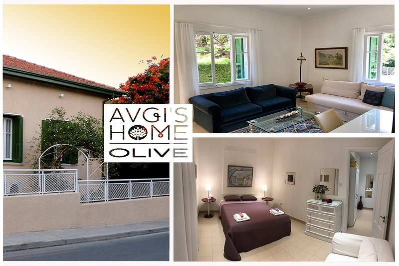 Olive Garden Apt. at Avgi's Home Vacation/Family/Business amazing, large and cozy Apartment