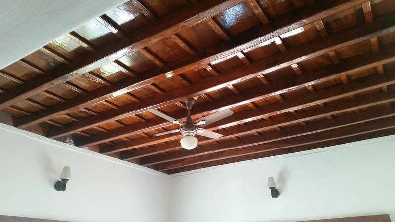 Living Room - Ceiling