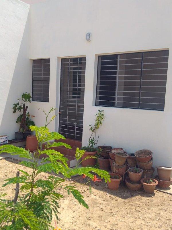 Door to backyard kitchen garden