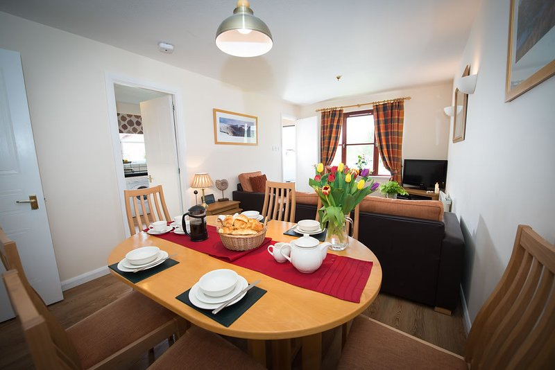 Aviemore accommodation chalets for rent in Aviemore apartments to rent in Aviemore holiday homes to rent in Aviemore
