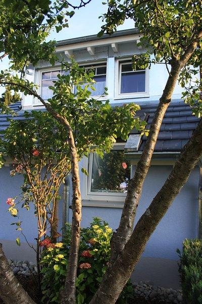 L'appartement est situé dans le grenier et parfaitement rénové en 2016 et situé dans un quartier résidentiel calme.