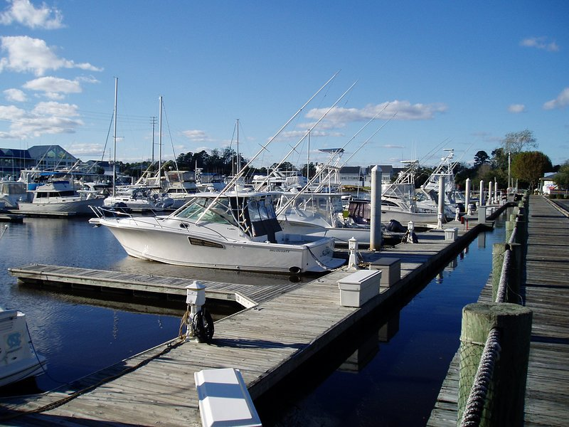 Deep Sea fishing charters are available at various marinas along the Grand Strand
