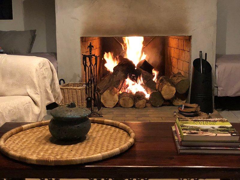 Log Fire Place per gli inverni freddi