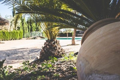 Amazing house with shared pool, vacation rental in Osuna