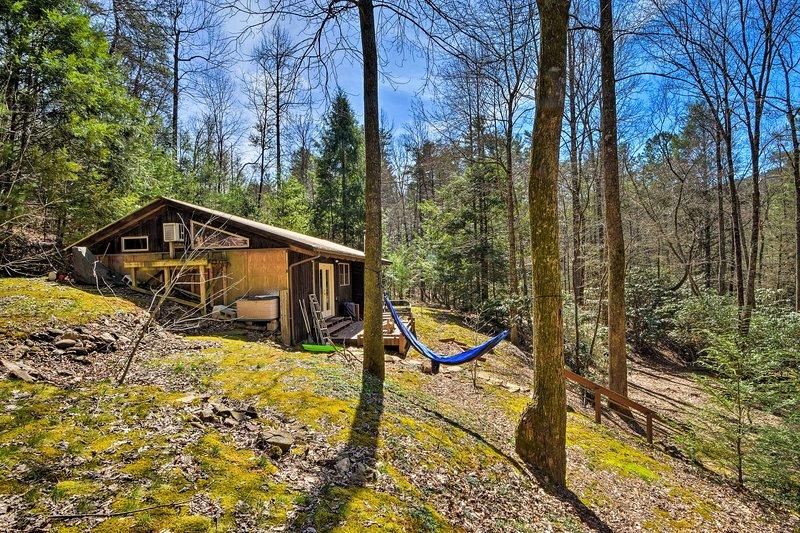 ¡Cambia el estrés diario por la vida silvestre de Georgia en esta cabaña tipo estudio de estilo chalet!