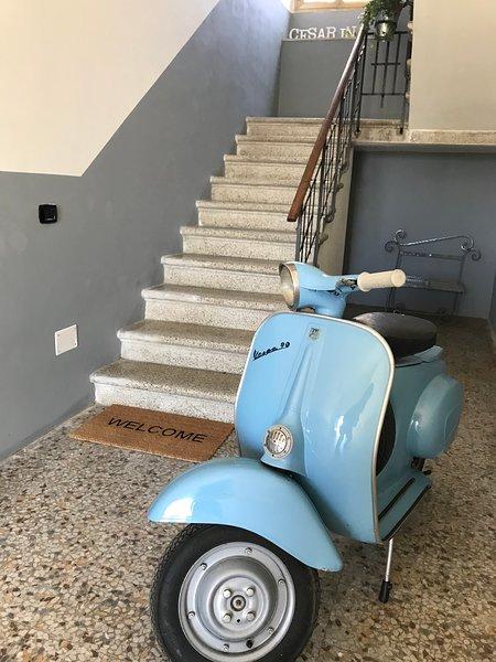 Casa Cesarina, aluguéis de temporada em Monsummano Terme