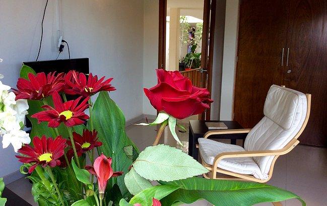 Casa Roa #1 KING, holiday rental in San Agustin Buenavista