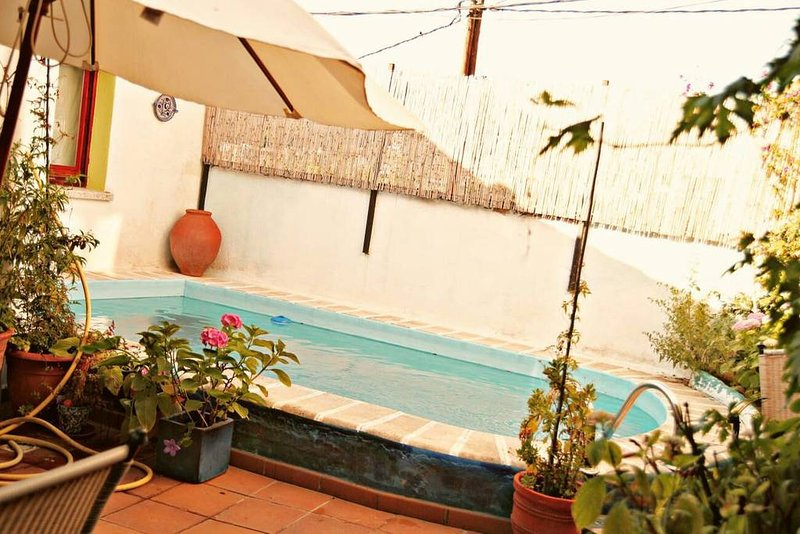 Nice apt with shared pool & terrace, vacation rental in Arbucies