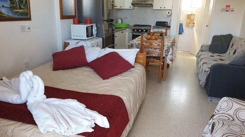 Studio First floor near the sea 28 sq.meters - Astrofegia Apartments, holiday rental in Nea Dimmata