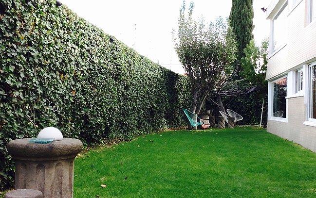 Casa Roa #2 Room - Double Occupancy, holiday rental in San Agustin Buenavista