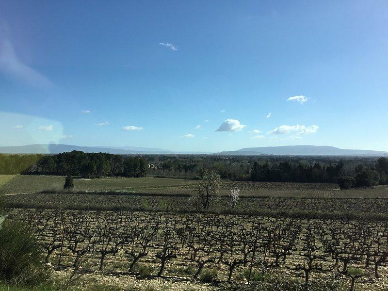 Paysage de notre coin de Provence