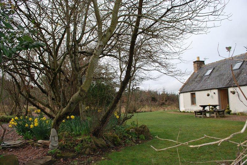 Accogliente cottage nel bosco.