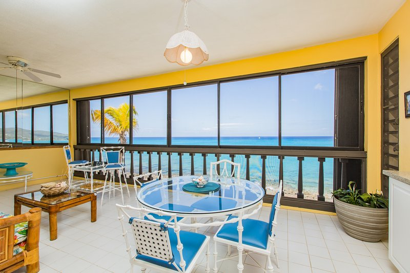 Sea La Vie - 1 BR/1 BA Beachfront Condo - Relaxing Getaway! Views! Snorkeling!, vacation rental in Frederiksted