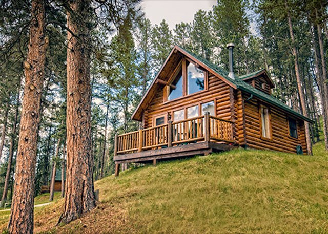 """This delightful loft cabin is set in the trees and has an extra window that looks up the """"draw.'"""