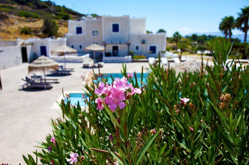 Paradise Apartment at Mylopotas Beach, Ios, Greece, holiday rental in Yialos