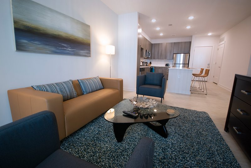 Spectacular Spectrum Suites - Luxury One Bedroom Furnished Apartment - Contemporary Open-Kitchen and Living Room