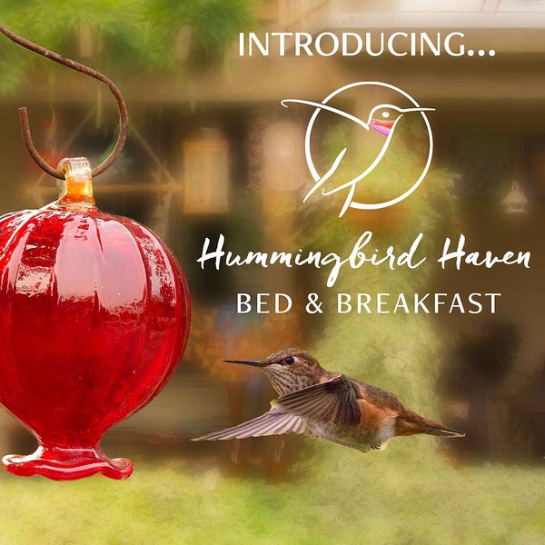 Hummingbird Haven B&B, holiday rental in Vesuvius