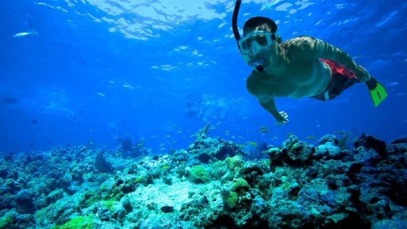 Snorkeling adventures!