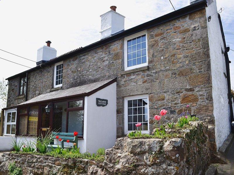 Trecarne Cottage, holiday rental in Upton Cross
