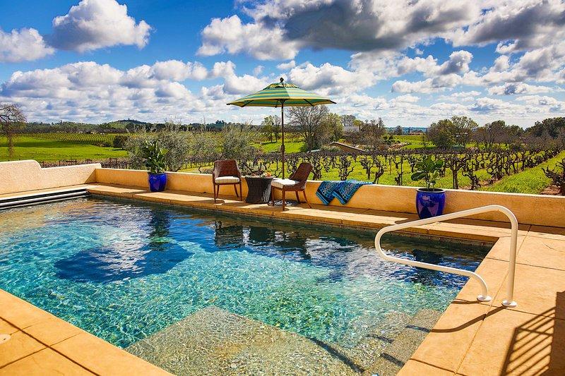 Nagez dans la piscine privée avec des vignobles vallonnés en toile de fond.