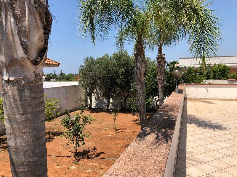 Big house with terrace, vacation rental in Marina di Mancaversa