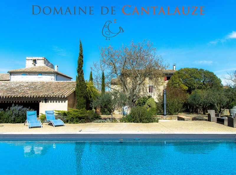 Domaine Viticole Proche de Carcassonne, holiday rental in Conques-sur-Orbiel