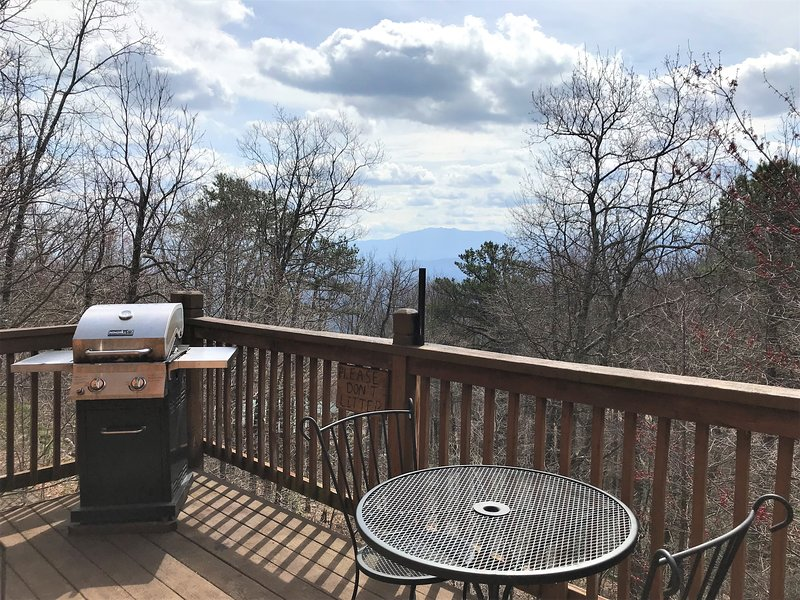 Looking towards Mount Leconte , enjoy the back deck and grill.
