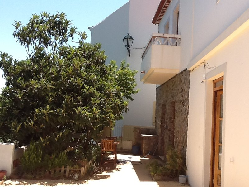 Beautiful house with garden, holiday rental in Rogil