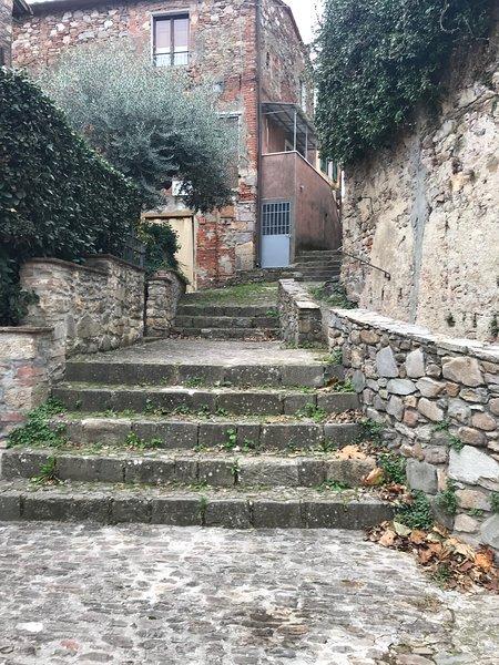 Spacious house with garden & Wifi, casa vacanza a Bientina