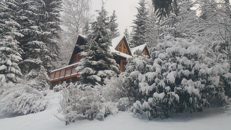 Chalet Bellevue Rogla, location de vacances à Slovenska Bistrica