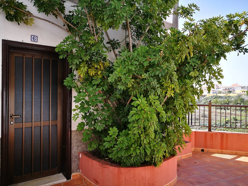 6 Stay in Alajeró and enjoy peace!, vacation rental in La Gomera