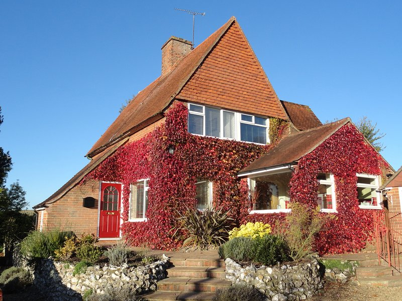 LITTLE FROMANS, open fire, dog friendly, King's Somborne, holiday rental in Andover