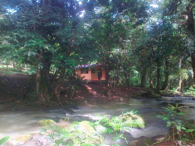 Vanilla Jungle Lodge - Bed & Breakfast in the Rainforest – semesterbostad i Province of Heredia