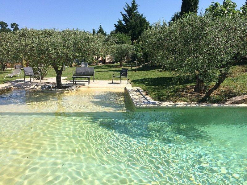 Le miroir aux oliviers à Mons : un lieu de vacances pour vous ressourcer, holiday rental in Saint-Privat-des-Vieux