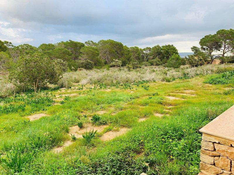 Can Parra Formentera, location de vacances à Es Cap de Barbaria
