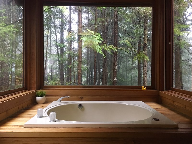 Japanese style, 4 foot-deep jacuzzi tub with jets. Privacy wall to the left & forest to the sides.