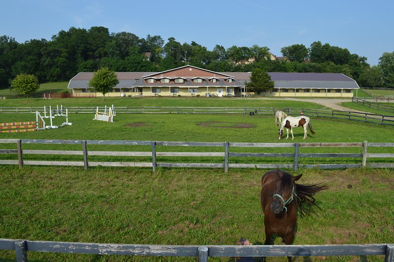 S\'all Good Stable and Apartments - Country Living Vacations ...
