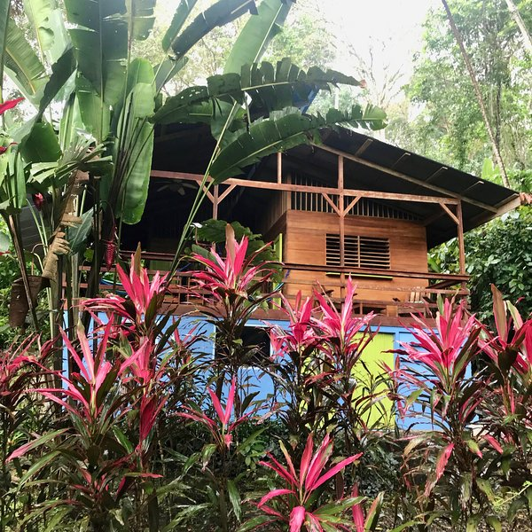 Colibri Jungle Oasis, Close to the Beach, Ferienwohnung in Cocles