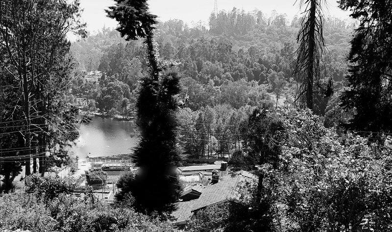 Avantara Amazing Lake View Wooden Chalets, holiday rental in Kodaikanal